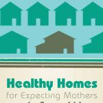 Healthy Homes for Expecting Mothers and Families